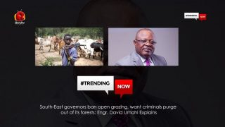 Beryl TV south-east-governors-ban-open-gr-320x180 South-East governors ban open grazing, want criminals purge out of its forests: Engr. David Umahi Explains News