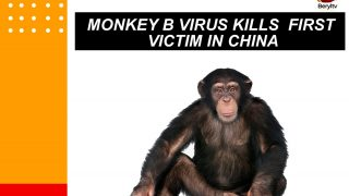 Beryl TV IMG-20210719-WA0001-320x180 CHINA NEWS ON MONKEY B VIRUS News Nigeria Daily Entertainment News | Top headlines | Celebrity News and lifestyle - Beryl Tv